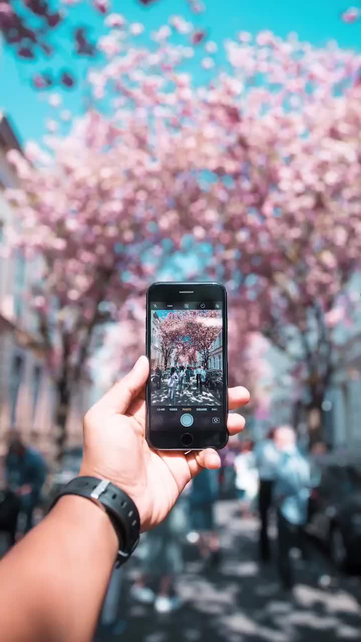 旅行摄影,怎样才更有代入感?添加点前进吧!那如何选取前景?
